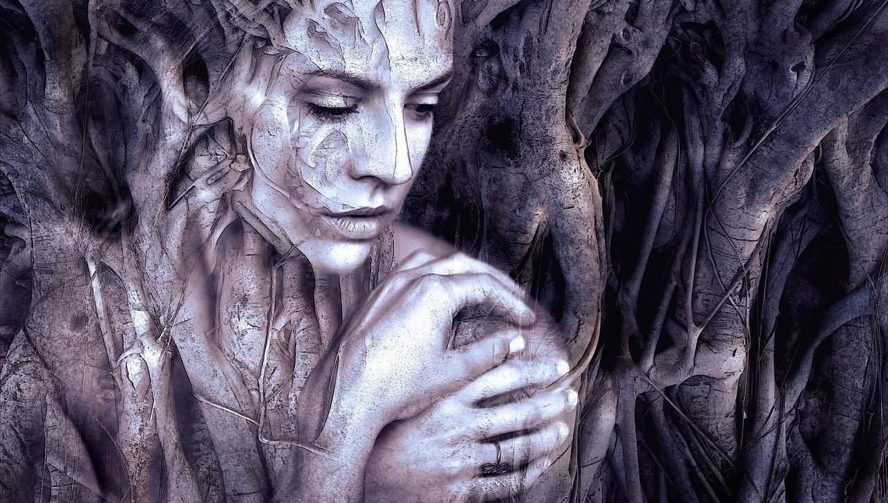 בוק בת מצווה פיה ביער